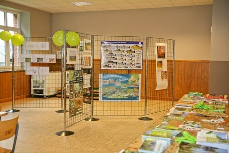 Gedinne Ecolo balades: forêt, biodiversité et changements climatiques