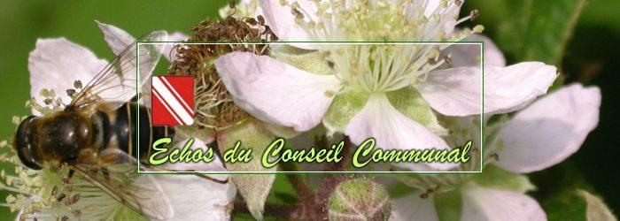 Conseil communal de Gedinne, du 30 mars 2017
