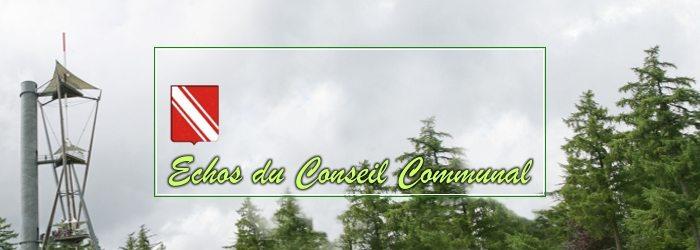 Conseil communal de Gedinne, du 9 mars 2017