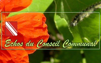 Conseil communal de Gedinne, du 22 juin 2017