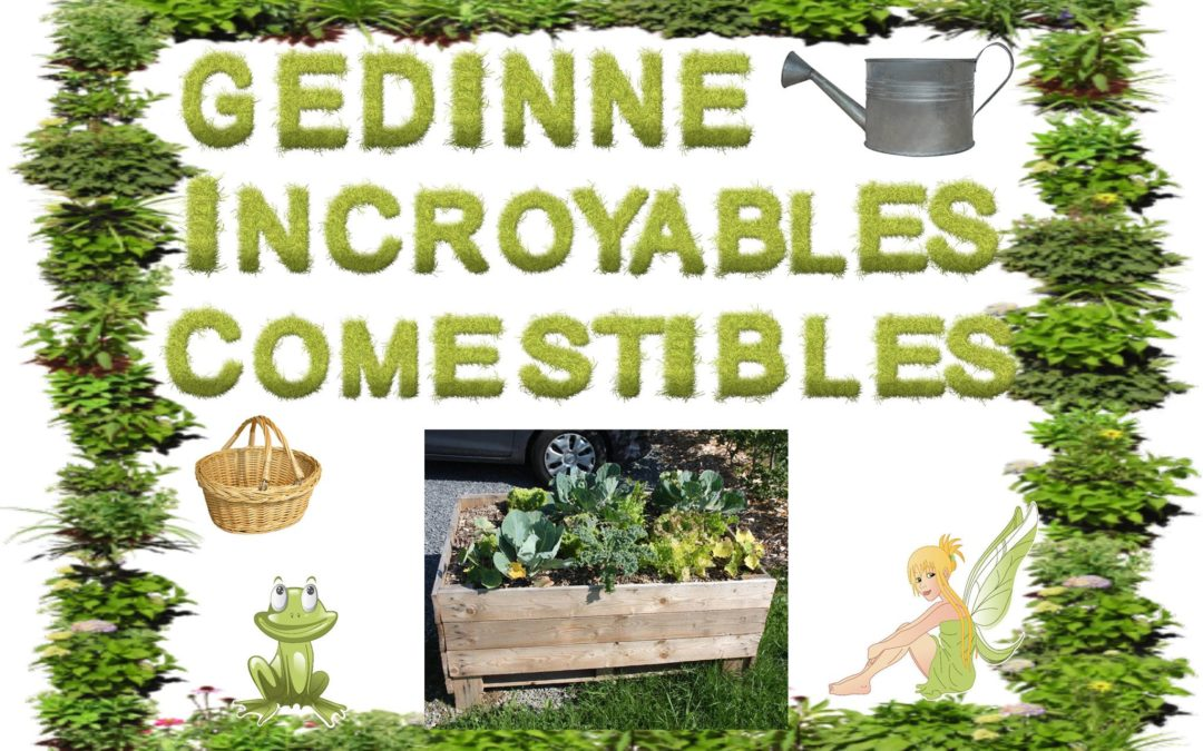 Gedinne Incroyables Comestibles