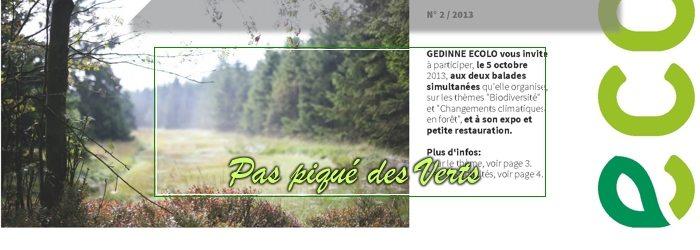Pas piqué des Verts 02     Automne 2013