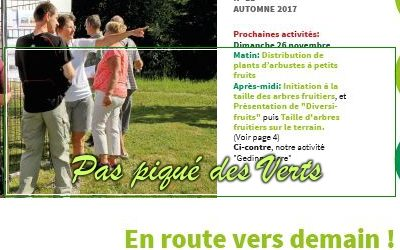 Pas Piqué des Verts 11, automne 2017