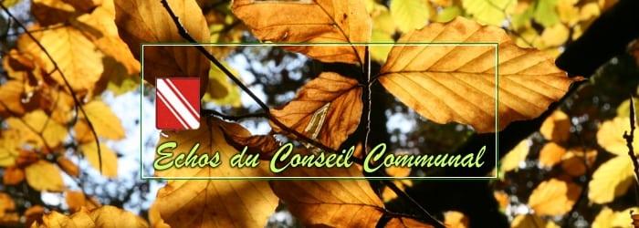 Conseil communal du 25 septembre 2019