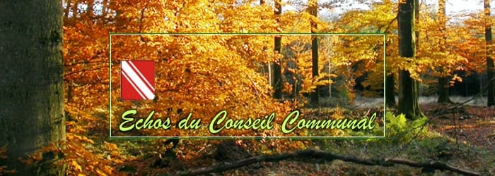 Conseil communal du 1er octobre 2020: Comme un soir d'automne…