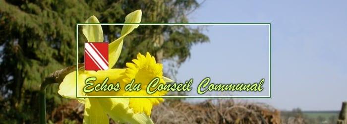 Conseil communal du 31 mars 2021: encore un projet non concerté !