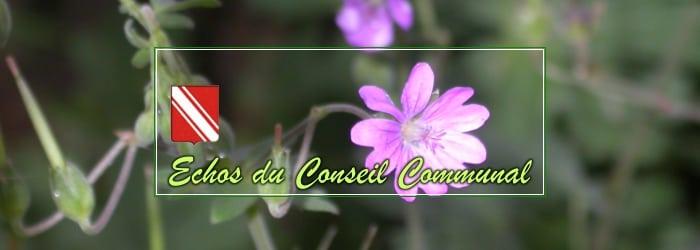 Conseil Communal du 2 avril 2019