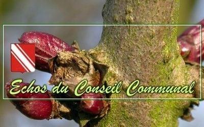 Conseil Communal du 27 février 2019