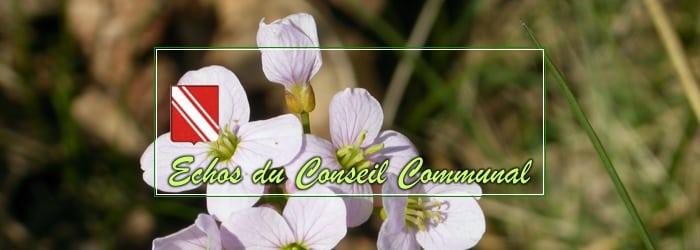 Conseil communal du 5 mai 2021: gestion courante…
