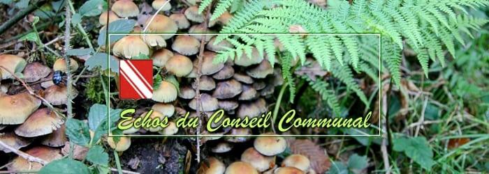 Conseil communal du 10 novembre 2020: attention à nos associations!