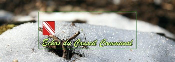 Conseil communal du 20 février 2020