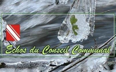 Conseil communal du 27 janvier 2021 : une année qui commence calmement… ou presque !
