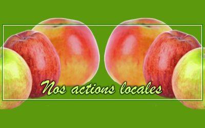 Faites votre jus de pommes !