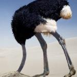 tête dans le sable