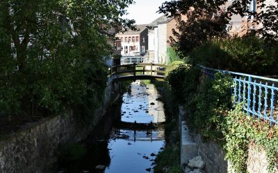 Etudiants, tourisme et horeca: propositions d'accompagnement par la commune de Gedinne dans le cadre du Covid-19
